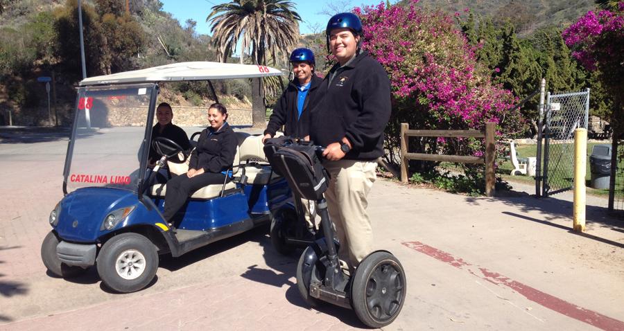 Island Rentals Golf Carts Avalon